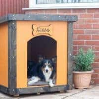 DIY Dog House Build Using Plywood