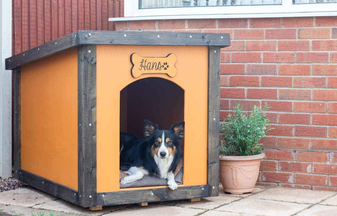 personalised plywood dog kennel