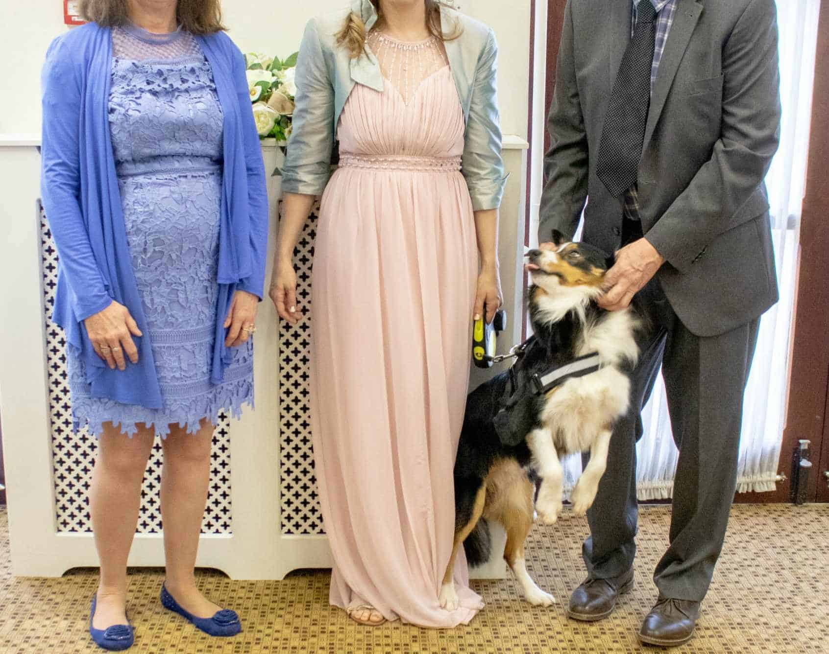 bride and parents with border collie at dog friendly wedding