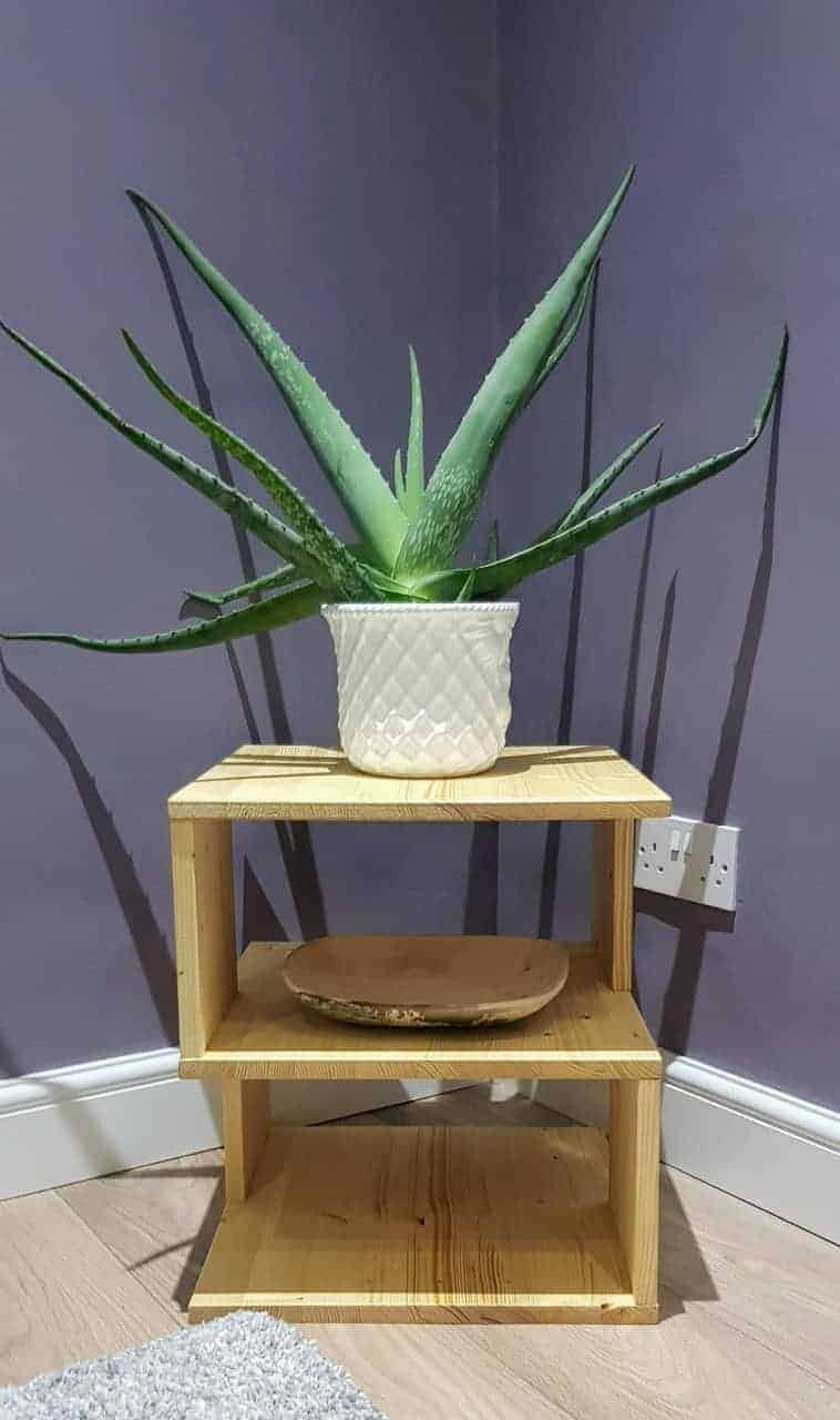 S shaped unusual side table as a plant stand.