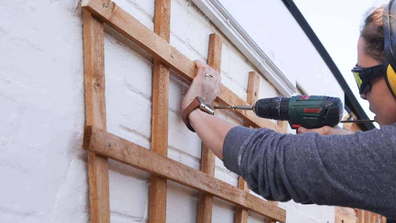 screwing concrete screws through trellis to fix to brick wall