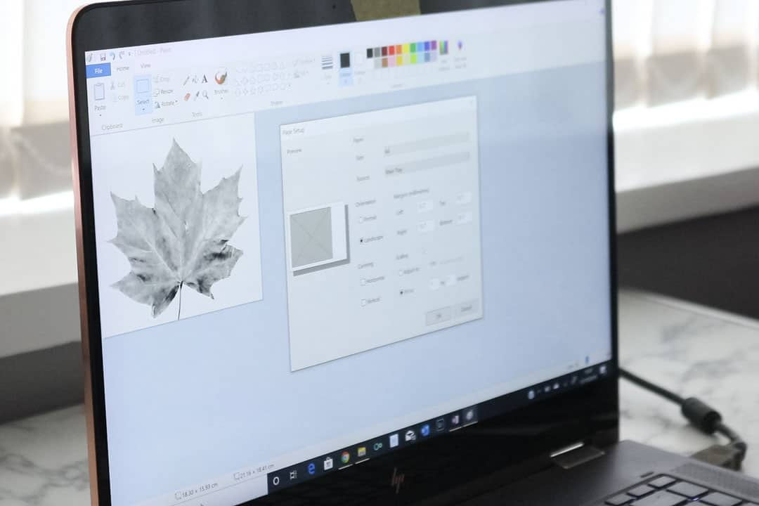 photo editing maple leaf for printing
