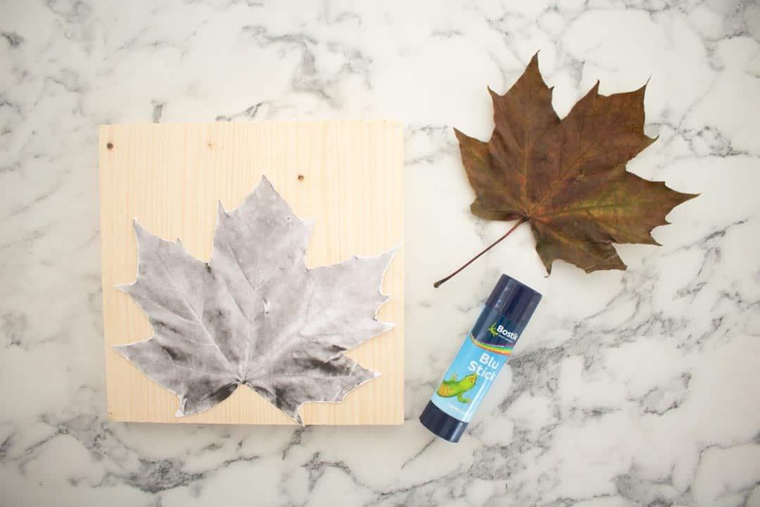maple leaf template on pine wood