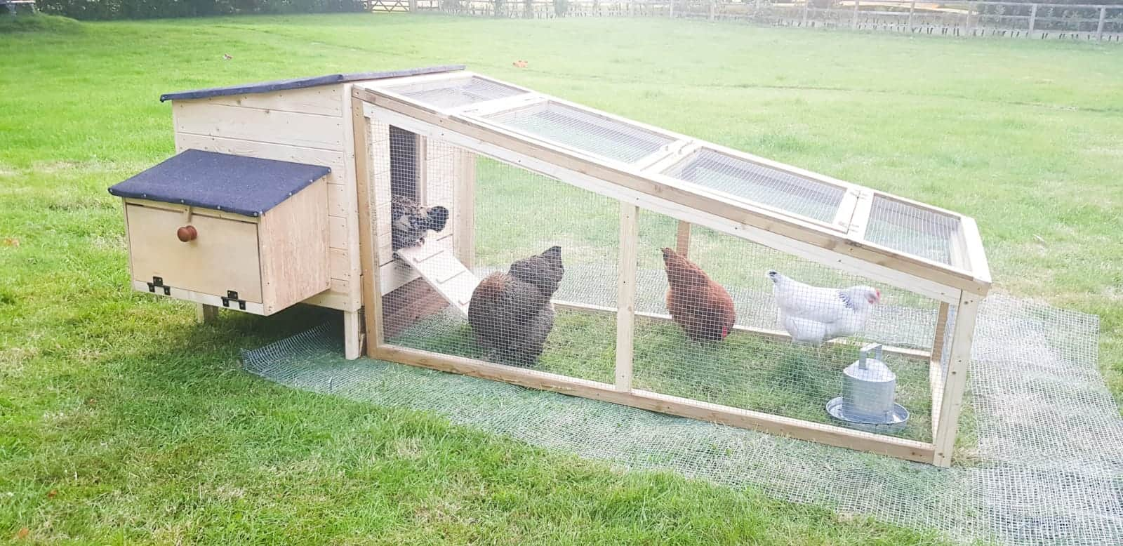 How to Build a Chicken Coop   The Carpenter's Daughter